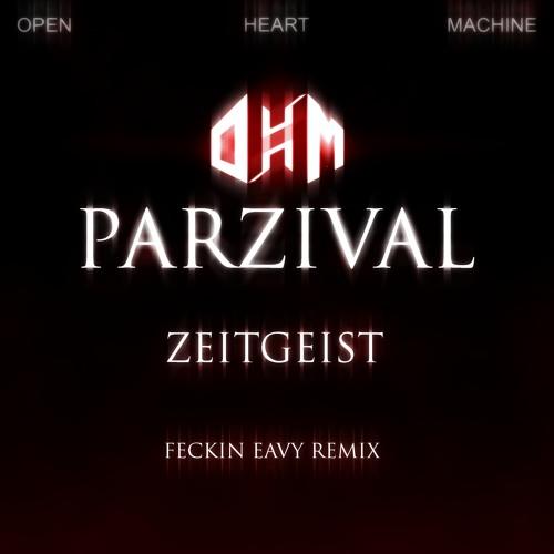 Zeitgeist (Feckin Eavy Remix)