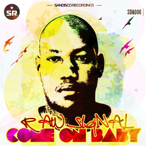 SDR006 : Raw Siqnal - Come On Baby (Original Mix)