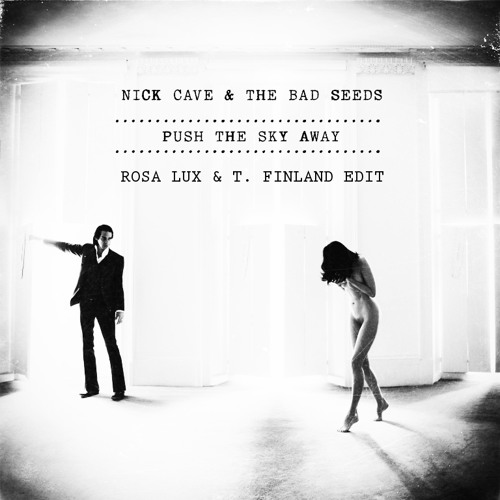 Nick Cave and the Bad Seeds - Push the sky (Rosa Lux & T. Finland Edit)