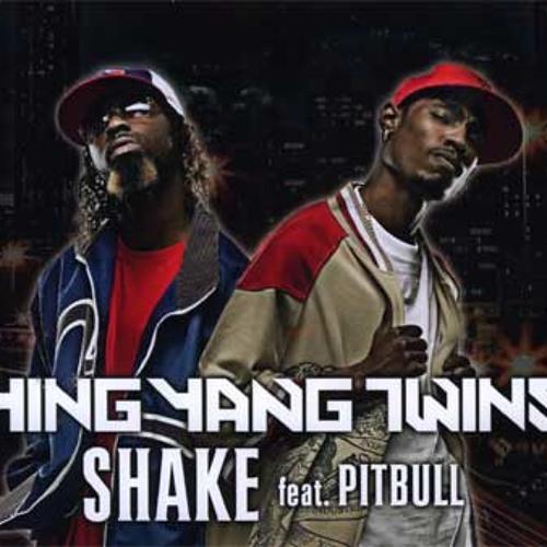 Ying Yang Twins Feat. Pitbull - Shake (Final Zone Remix)