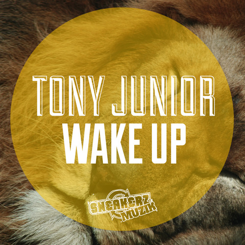 Tony Junior - Wake up [TEASER] [AVAILABLE ON BEATPORT JUNE 3]