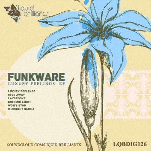 Funkware - Laygroove (Clip) (Liquid Brilliants)