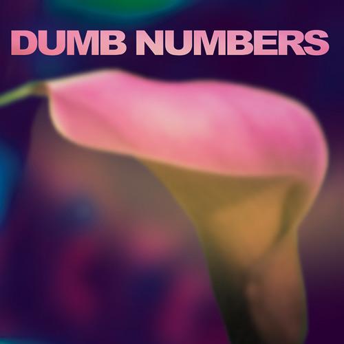 "Dumb Numbers ""Redrum"""