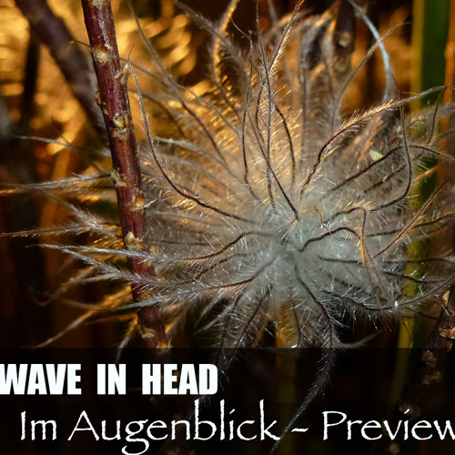 WAVE IN HEAD - Im Augenblick - preview