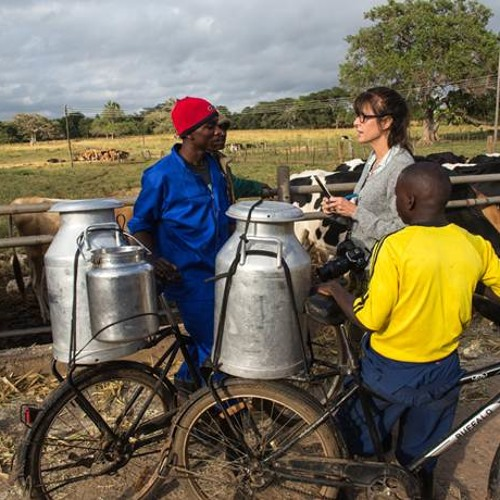 Global Activism: World Bicycle Relief