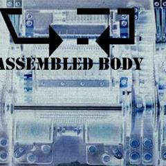 [Assembled Body] - Digital Error