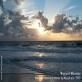 Intro no memory - remix 2013