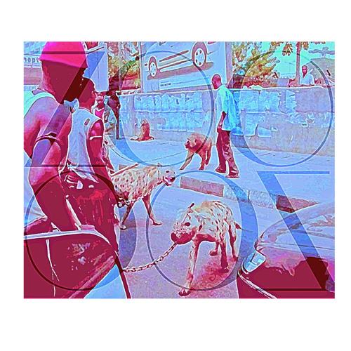@Jolly4Mayor x KooKev x Stikkmann - Zoo (Prod Play Picasso)