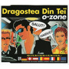 O-zone - Dragostea Din Tei 2013 (Summer Remix 2013)