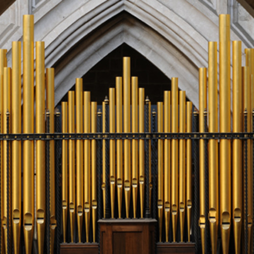 Reger - Chorale-Fantasia: Halleluja! Gott zu loben (excerpt) LIVE @ Winchester Cathedral, 14/05/2013