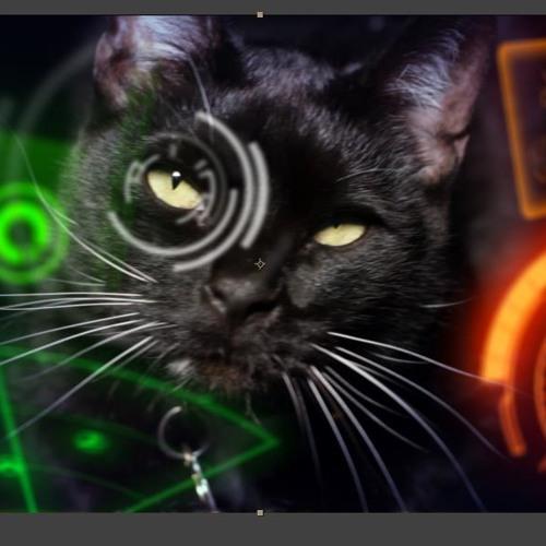 Cat Dreams Score