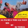 AA PAUCHA TERI GALI MAI MIX BY DJ VISHAL