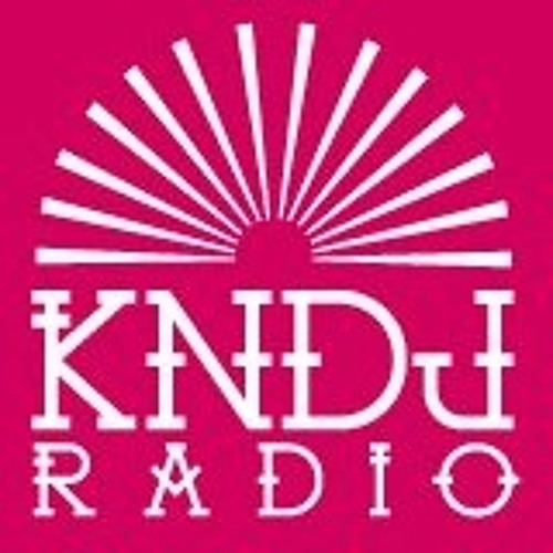 KNDj Radio @ Mr.Absolutt Vinyl Mix Live  [17.05.13] Free DL