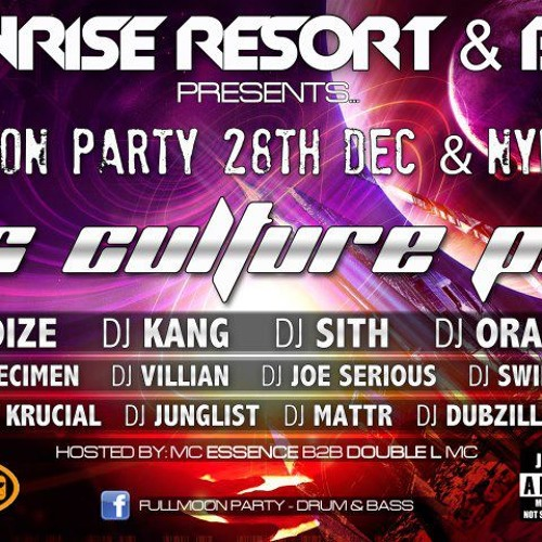 NYE to NYD (2012 - 2013) Joe Serious, Double L, Deanoman Full Moon Party new year's eve