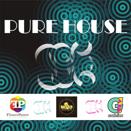 PURE HOUSE 2013 ( DJ MAIKOL VENEK ) PLAY LIST !!!
