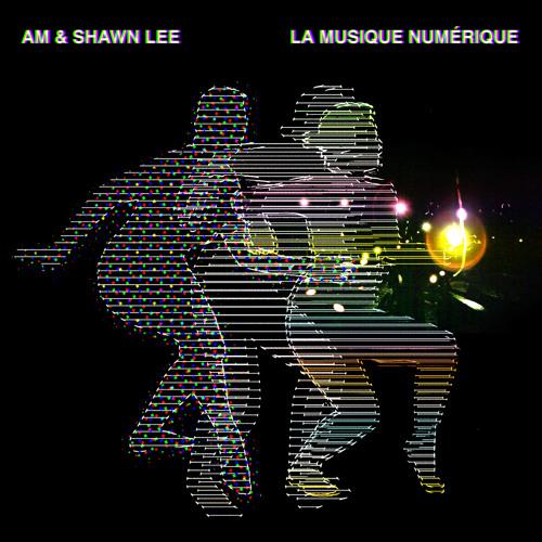 AM & Shawn Lee- La Musique Numerique