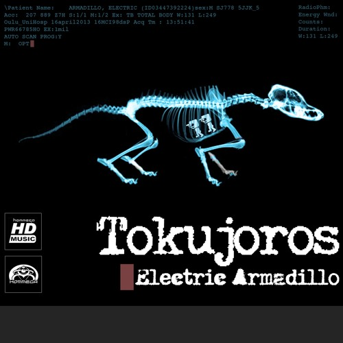 Tokujoros - Electric Armadillo (Album Preview Mix)