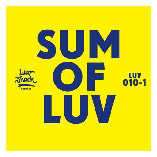 Lee Stevens & Domino - Be Yourself (Voyeurhythm Remix) // low res