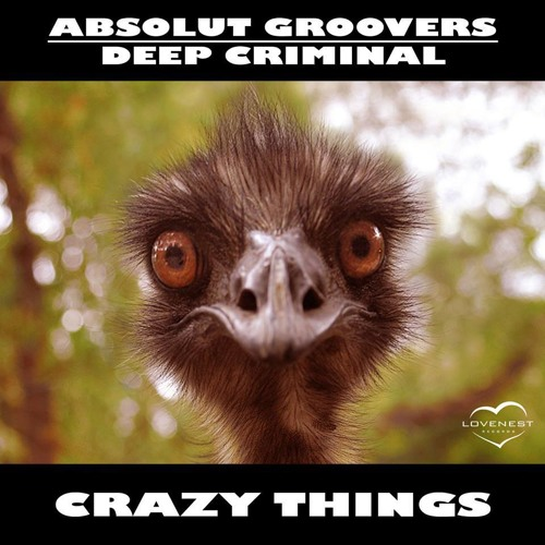 Absolut Groovers Vs Deep Criminal -  Crazy Things (Original Mix)