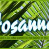 Hosanna - Instrumental Cover
