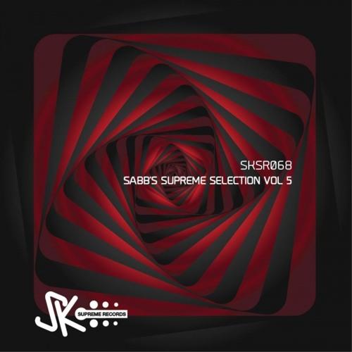 SKSR068 : Elias R & Alessan Main - Waska (Original Mix)