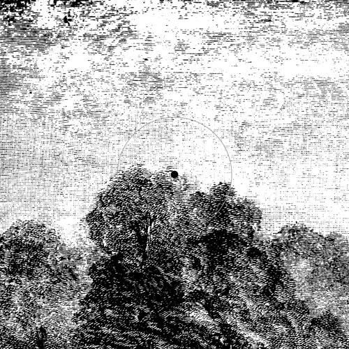 NORM TALLEY deep consciousness (PHORMA001)