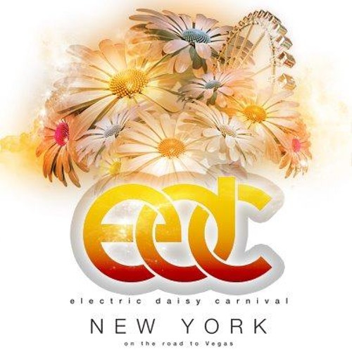 Sultan + Ned Shepard LIVE @ EDC NYC 2013