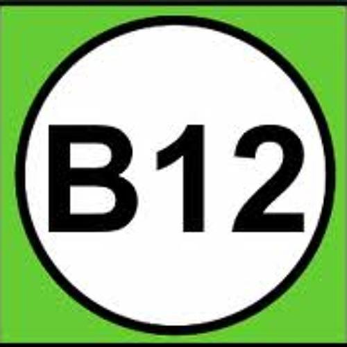 B12 (Original Mix)