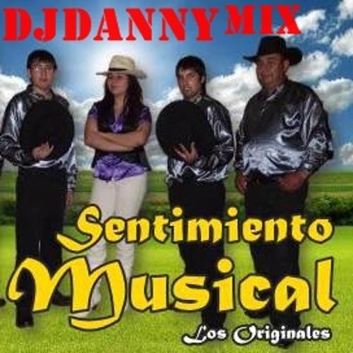 Sentimiento musical mix ft dj danny frutimix  2013