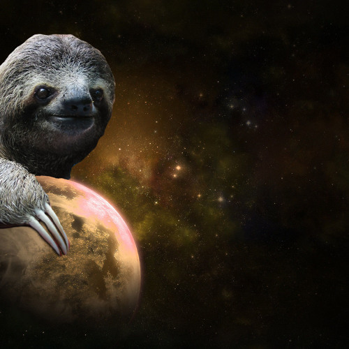Sloths In Space