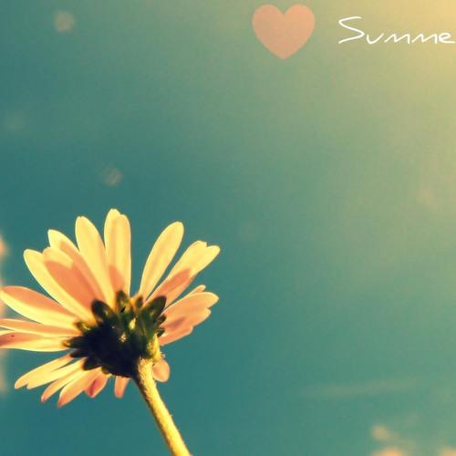 Lana Del Rey - Summertime Sadness (Gal Abutbul Private Bootleg)
