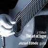 J. S. Bach: The Art of Fugue BWV 1080 - Contrapunctus 1 - for two 8-strings guitars