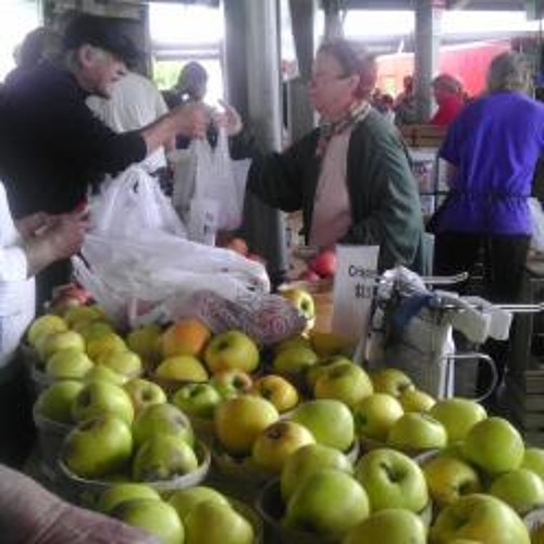 Fighting fire blight in New York's apple industry