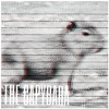 The Capybara - Sore (Jay Jay Johanson Cover)