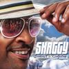 Sugarcane - Shaggy