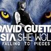 She wolf - David Guetta ft Sia