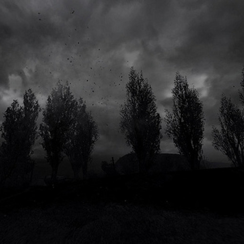 El antiguo jardin oscuro