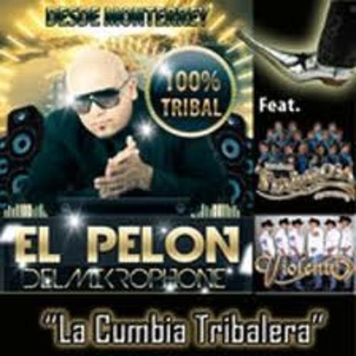 Cumbia Tribalera - El Pelon Del Mikrophone(Dj Johny Sencillo Remix)