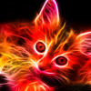 Fire Kitty  (Cover of Fire by The Crazy World Of Arthur Brown)