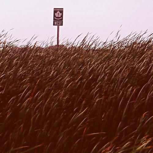 Field Tracker #27 - Hypnotic; September 9, 2012