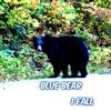 Blue Bear - I Fall