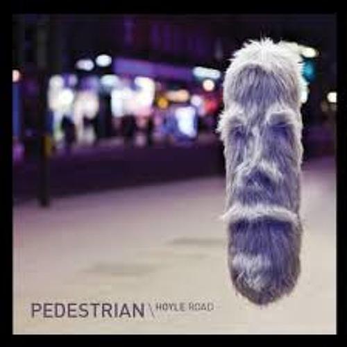 Pedestrian - 'Hoyle Road' (SpectraSoul Remix)