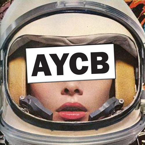 AYCB 017 - Jan Driver - 1995 - PREVIEW
