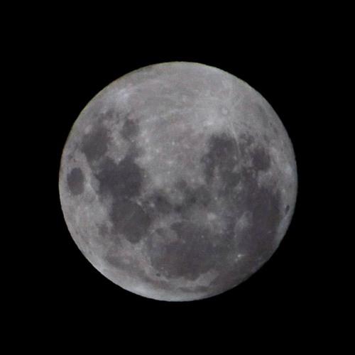 Nelson Hämmerle - Luna clara