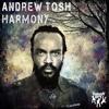 Andrew Tosh & Ky-Mani Marley - Harmony (Crazy Vocal Dub)