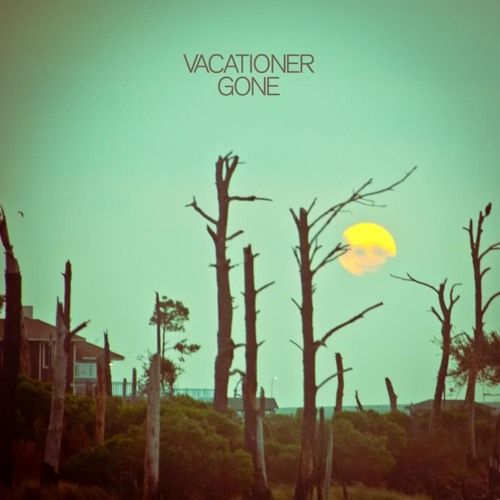 Vacationer - Gone LP