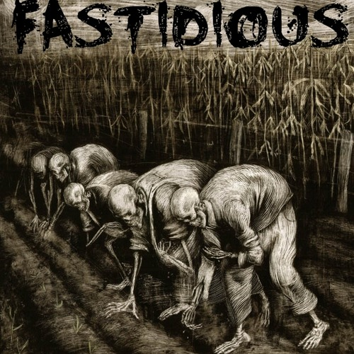 Fastidious - by insanity ( original mix )