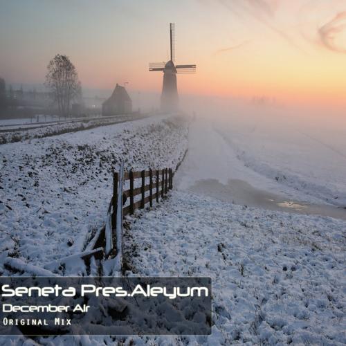 Seneta Pres.Aleyum - December Air [Free Download]