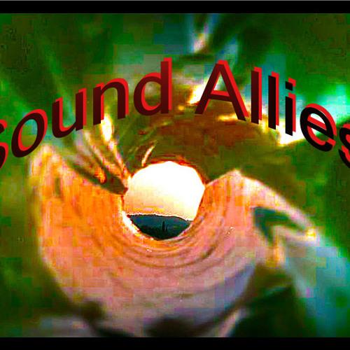 Sound Allies - 007   LIVE!