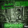 Download Product Of My Environment Mp3